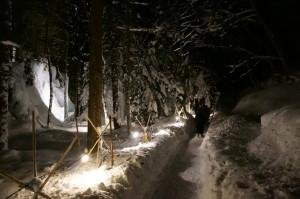 青だる雪の回廊3
